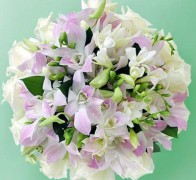 Букет невесты из орхидей №12
