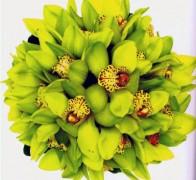 Букет невесты из орхидей №17