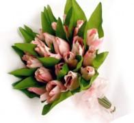 Букет невесты из тюльпанов №3