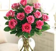 RAN ELEGANCE PINK Роза розовая